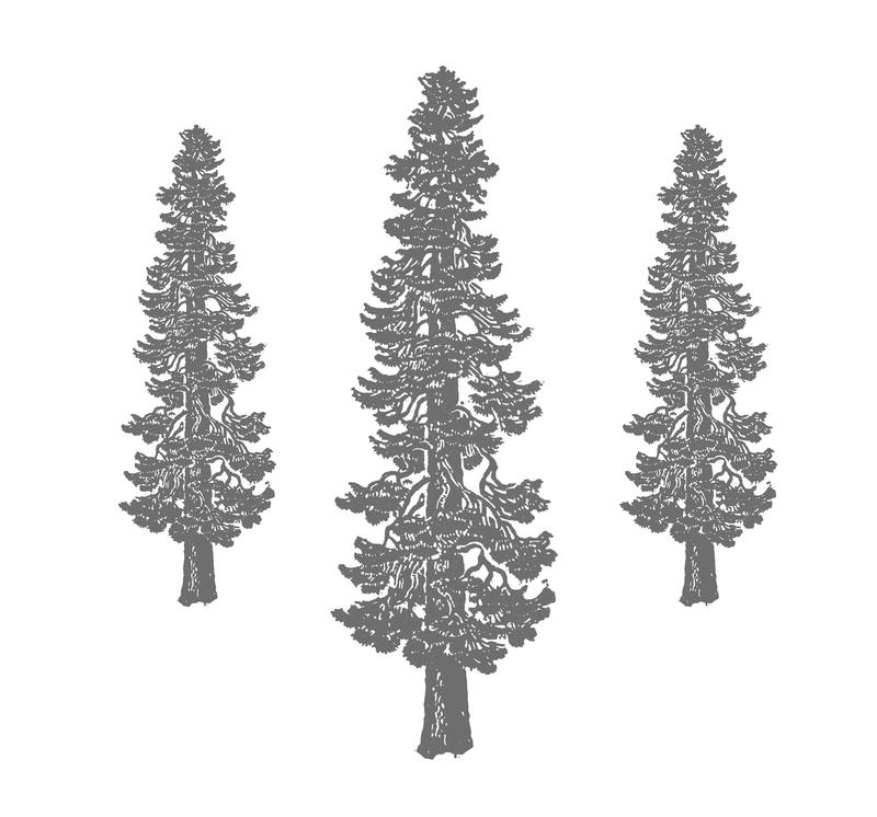 redwoodiconomeka.jpg