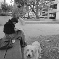 College Five (later Benjamin F. Porter College): student with a dog. 1974.