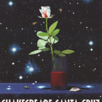Summer 1999 season poster