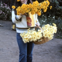 Garden Project: cut flowers brought to kiosk for faculty and students to take. 1971.