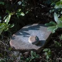 Grinding stone, upper campus
