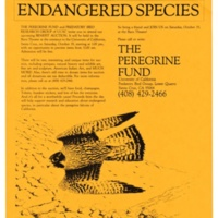 Predatory Bird Research Group--The Peregrine Fund appeal. Circa 1980s.