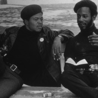 A Photo Essay on the Black Panthers