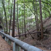 Sewer line in ravine