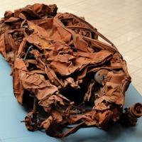 Al-Mutanabbi Car bomb wreckage on display