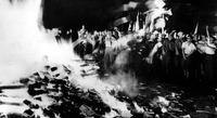 Nazi book burning, 1933.<br />
